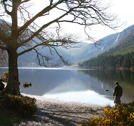 a solitary person by Glendalough lake